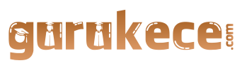 gurukece.com